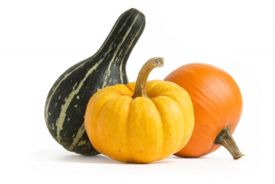 PUMPKIN – THE MOST USEFUL GIFT
